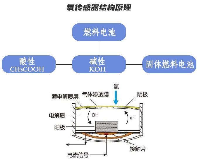 电化学原理图.jpg